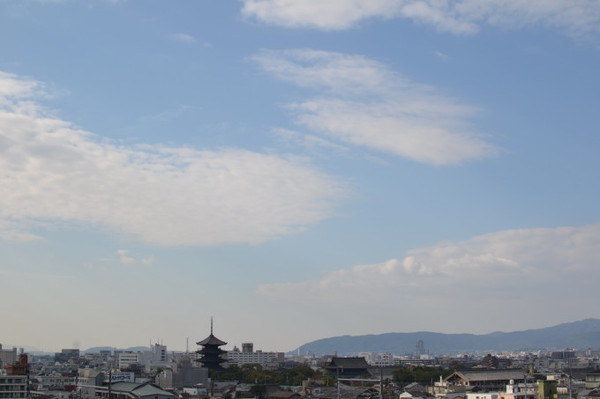 Blog_248